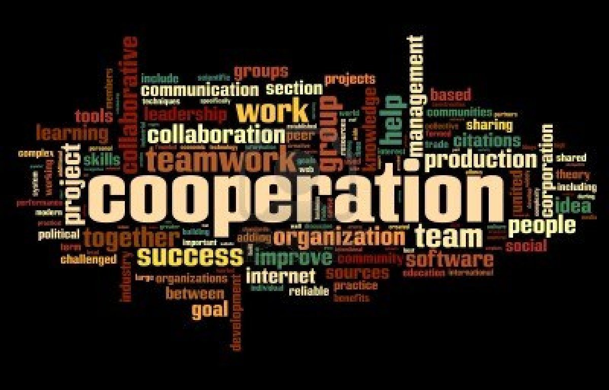 essay on cooperation kind of social interaction
